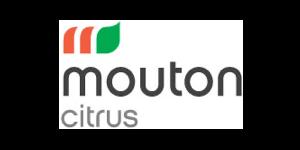 mouton citrus logo